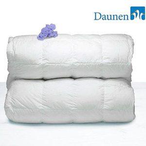 Пуховое одеяло 250*200 G600 Classic Winter DaunenStep